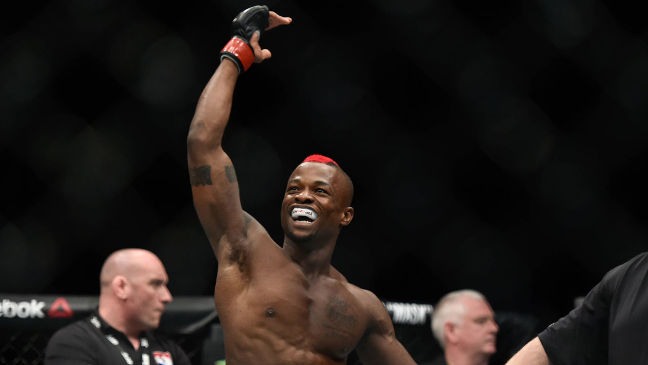 Cropped 2017 03 18t192255z 1379016271 nocid rtrmadp 3 mma ufc fight night diakiese vs packalen