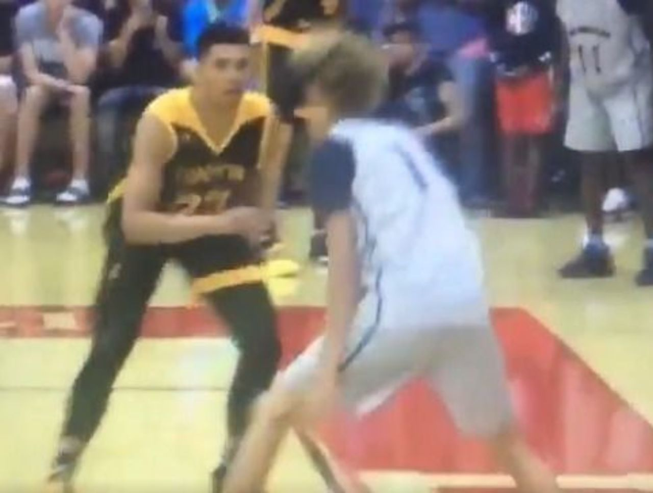 Cropped lamelo ball