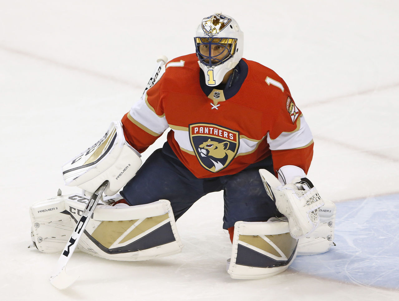 Cropped 2017 10 13t002652z 375735198 nocid rtrmadp 3 nhl st louis blues at florida panthers