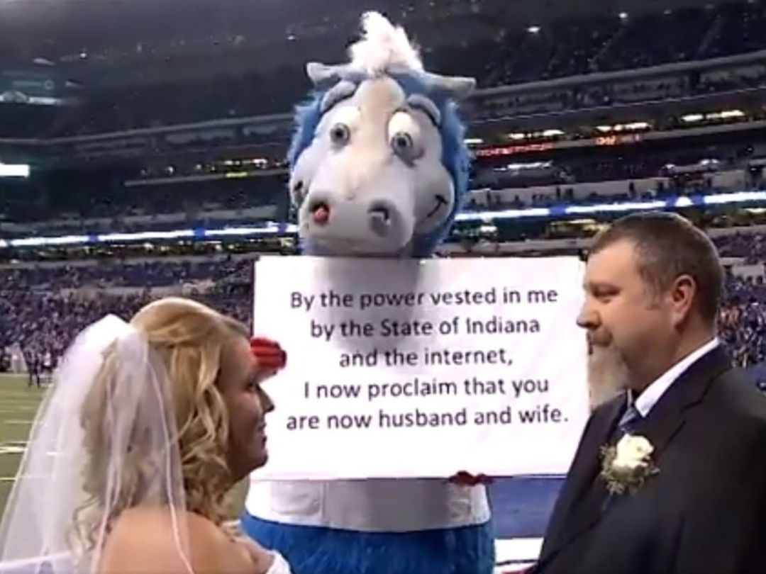 Colts fans got married on field before Thursday's game