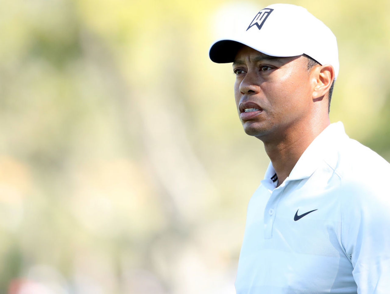 tiger woods enough is enough Tiger woods forum post for not enough video memory.