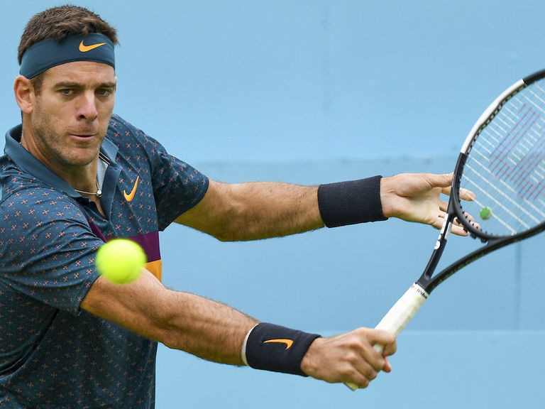 Del Potro joins Gasquet, Murray in withdrawing from Australian Open
