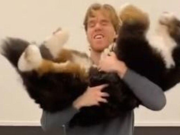 Watch: McDavid does squats by lifting his dog