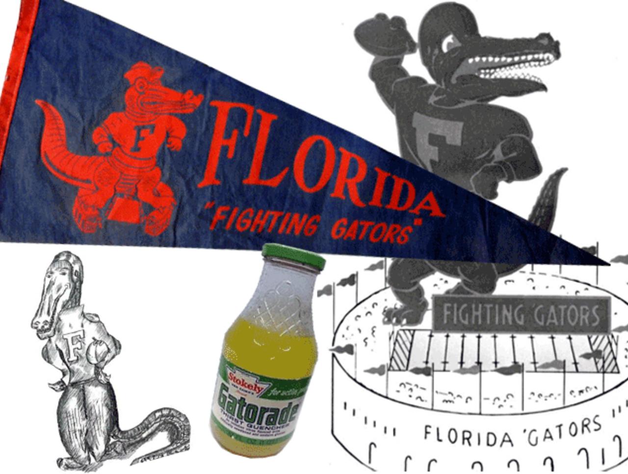 cropped_Florida_Gators.png?ts=1396444927
